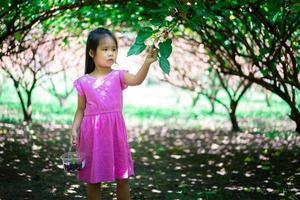 kleines Mädchen Maulbeeren pflücken