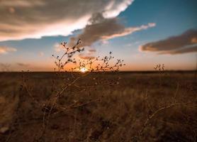 Amarillo, Texas Sonnenuntergang
