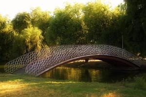 Brücke über den See foto