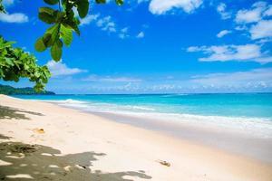 tropisches Ufer foto