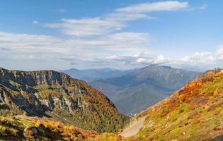 Herbstbäume in den Bergen