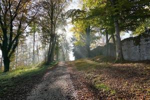 Herbstlandschaft auf dem Honberg