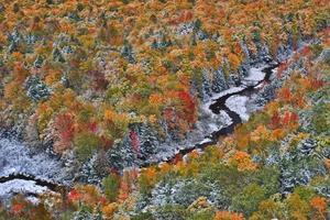 Luftaufnahme eines Herbstwaldes und eines Flusses mit Schneefall foto