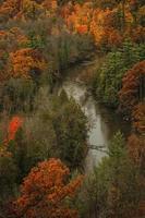 Fluss fließt durch einen Herbstwald