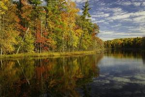Gewässer in der Nähe von Herbstbäumen