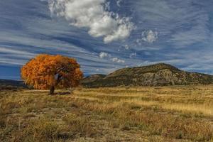 Herbstlaub und Berg unter blauem Himmel