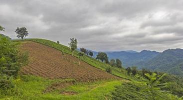 bewölkte Hügellandschaft
