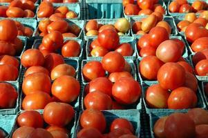 Tomaten zu verkaufen foto