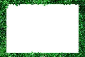 Papier mit grünem Blattrand foto