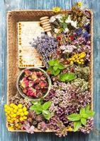getrocknete und frische Kräuter und Blumen im Korb.
