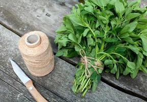 gebundener Oregano zum Trocknen auf Holztisch vorbereitet foto