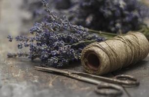 Lavendelernte foto
