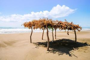 einsamer Strand und Sonnenschutz foto