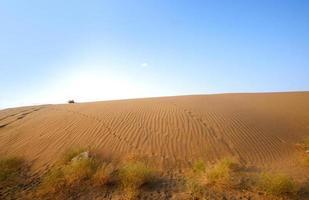 wellige Sanddünen bei Sonnenuntergang