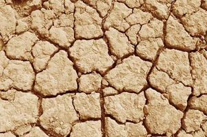 Seebett durch Trockenheit austrocknen