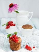 Schokoladenmuffins mit roten Johannisbeeren