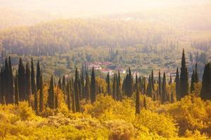 kroatischer Wald und Felder