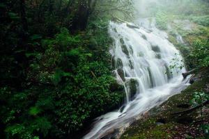 Wasserfall im Wald foto