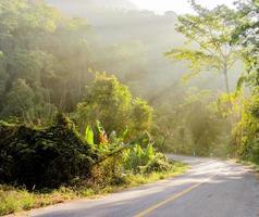 Wald und Straße mit Sonnenstrahl foto