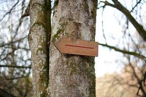 Zeichen in einem Wald auf einem Baum