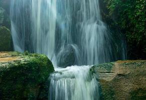der Wasserfall aus dem Wald im Sonnenlicht