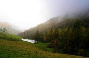 Herbstwald mit kleinem See im Nebel. foto