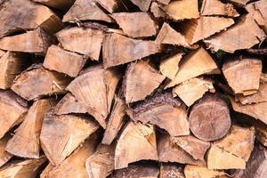 gestapeltes Brennholz aus Fichte im Wald
