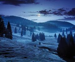 Nebel auf Wald in Bergen in der Nacht