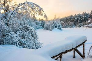 Morgenaufnahme des schneebedeckten Winterwaldes