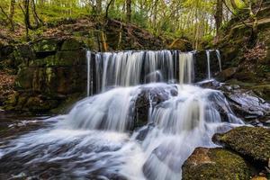 Quellwasserfall in einem abgelegenen friedlichen Wald. foto