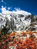 verbrannter orange Schnee foto