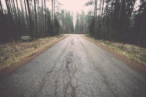 alte Straße im Wald. Jahrgang.