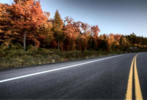 Herbstfarben und Straße