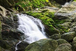 kleine Wasserfälle in der Natur mit Steinmauer foto