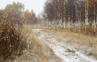 Landschaft kalter Herbsttag mit Schneefall. foto