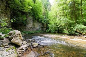 Wildwasser foto