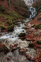 Ein wunderschöner Wasserfall kommt aus einem riesigen Felsen im Wald foto