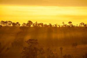 nebliger Morgensonnenaufgang im Berg bei Thung Salang Luang foto