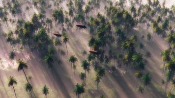Drei Luftschiffe fliegen im Morgennebel über den Dschungelwald