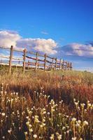 Zaun im grünen Feld unter blauem Wolkenhimmel foto