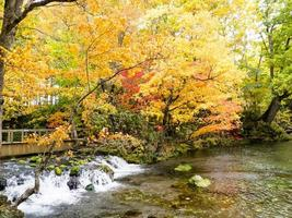 Herbst in Japan foto
