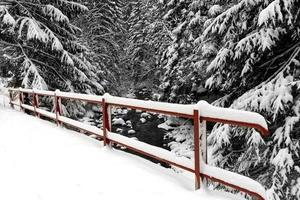 Brückenzaun unter Schnee foto