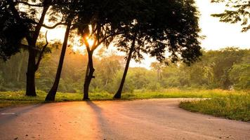 durch den Park zum Joggen oder Ausruhen