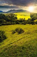 landwirtschaftliches Feld auf Hangwiese bei Sonnenuntergang foto