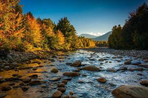 Herbstfarbe entlang des Peabody-Flusses im weißen Gebirgsnational