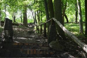 Parks, Seen und Winkel, Perle Lubusz Lagow foto