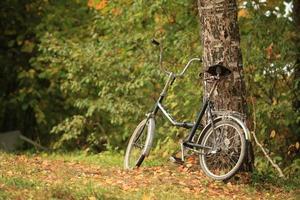 Fahrrad steht am Baum foto