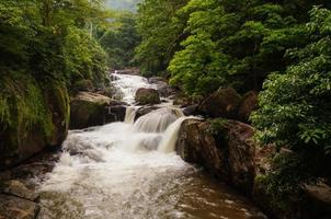 der schöne Wasserfall. foto