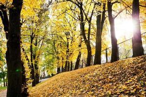schöner Herbst foto