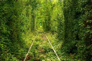 Tunnel der Liebe foto